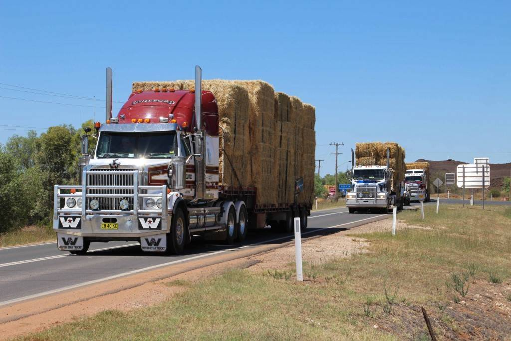 The Burrumbuttock Hay Runners passed through Cobar on January 7, on their way to Ilfracombe in Queensland. The hay runners delivered 5,000 bales to struggling graziers after travelling 1,860km.