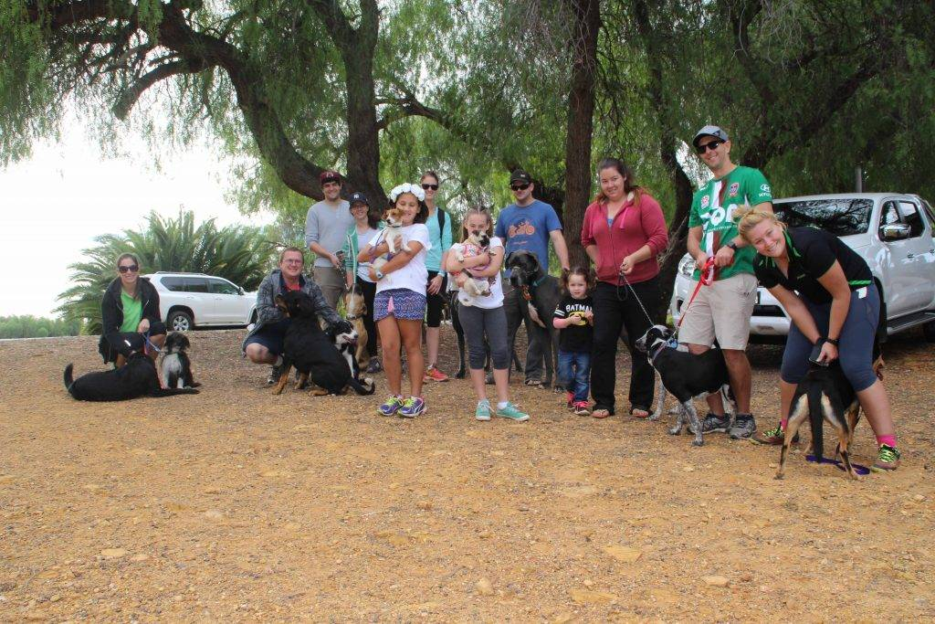 Local pet owners and their pooches joined in the RSPCA's 23rd annual Million Paws Walk fundraiser on Sunday morning at the Newey Reserve. More than 50 local people and almost 40 dogs of various breeds joined the walk, which is regarded as the most important date on the canine calendar. The local RSPCA branch is set to benefit 100 per cent from the funds raised which will go towards helping local dogs as well as cats and other animals in need. Some of the local participants are pictured above including: (top left) Parramatta Eels supporter Nash Webster and his dog Hindmarsh; (bottom left) Ronnette Richardson and her dogs Billie and Lucy, with Sarah Irvine and her children Sonny and Kody Maloney and their dog Ivy.